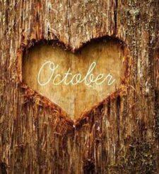 Justice, Peace & Integrity of Creation  – October Calendar
